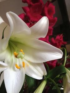 Silver Wedding Flowers